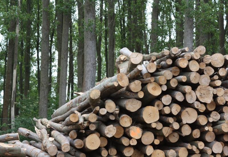 Installation de deux chaudières biomasse à Longuyon