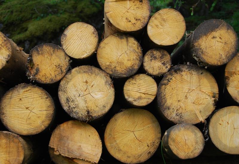 Une chaufferie biomasse pour Amnéville-les-Thermes