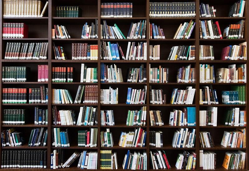 Développement de la Bibliothèque Numérique de Lorraine Limédia